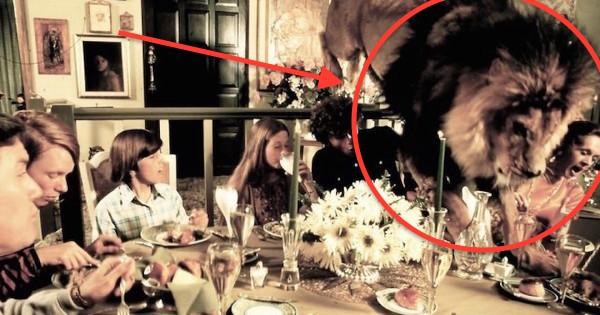この有名な家族はライオンをペットとして飼って一緒に暮らしていました。この話にあなたはショックを受けるでしょう。