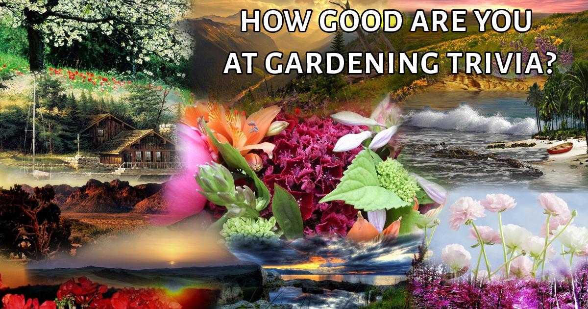 Gardening Trivia girlshqpicscom