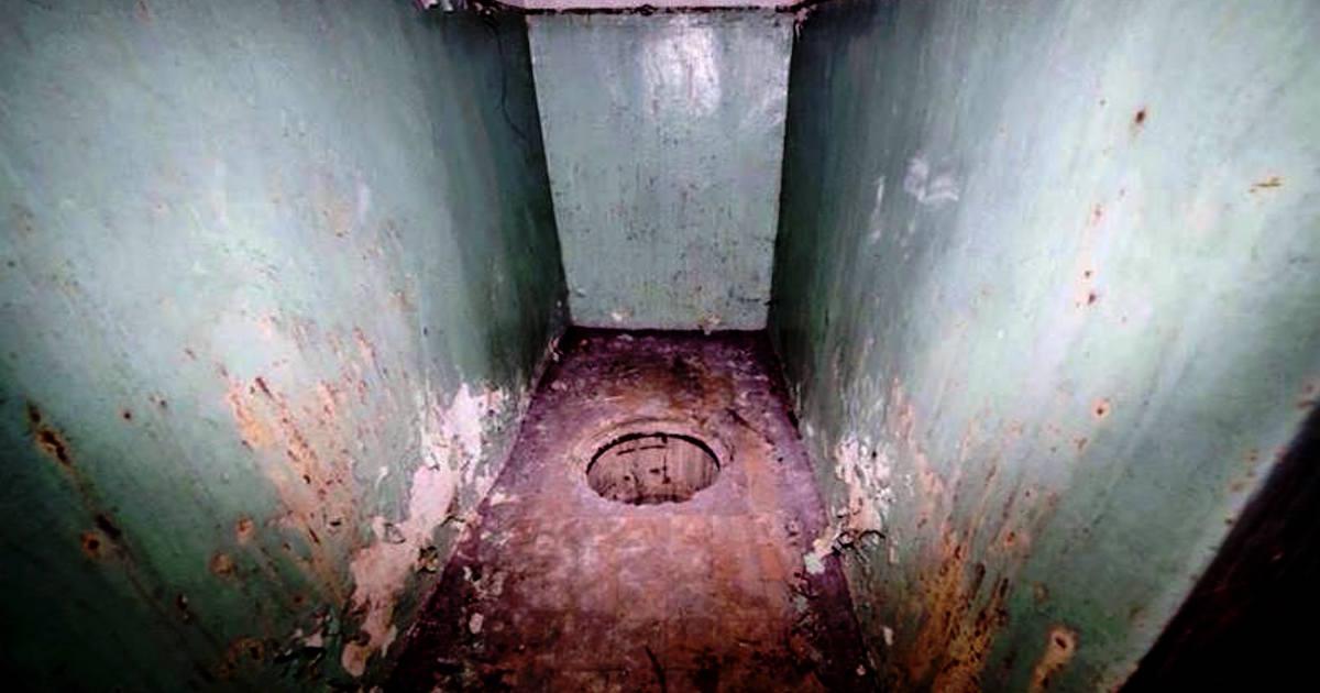 ナチスの秘密の貯蔵庫が森で発見される―少年2人が隠し扉を発見