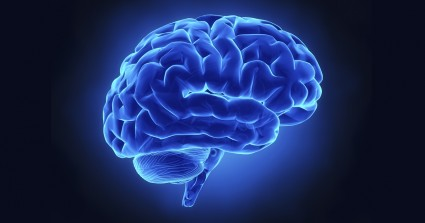 What Is Your Brain Good At?